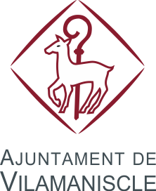 Web oficial de l'Ajuntament de Vilamaniscle Icon
